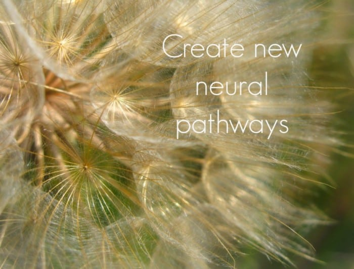neuralpathways